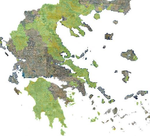 Δασικοί Χάρτες Δήμος Τανάγρας
